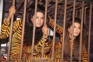 Negar Khan im Tiger-Kostuem